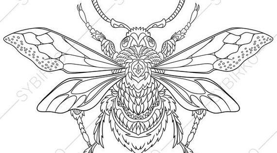 Coloring Page For Adults Digital Coloring Page Bumble Bee Etsy Coloring Pages Insect Coloring Pages Bee Coloring Pages