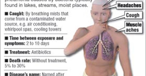legionnaires' disease (legionella pneumophila infections, Human Body