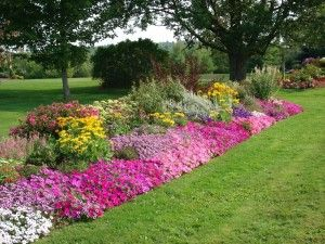 Flower Bed Ideas Making Garden Beds Flower Garden Layouts Flower Bed Designs Flower Garden Design