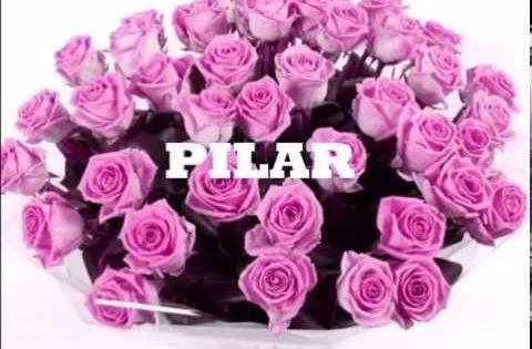 Pilar Feliz Día De Tu Santo Color Rosa Entrega De Flores Ramos De Flores