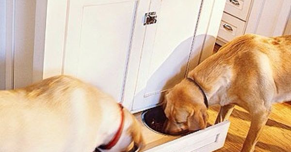 pet food drawer. good idea for dogs who finish their food all