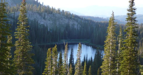 Trinity Lake Boise National Forest In Idaho Near Anderson