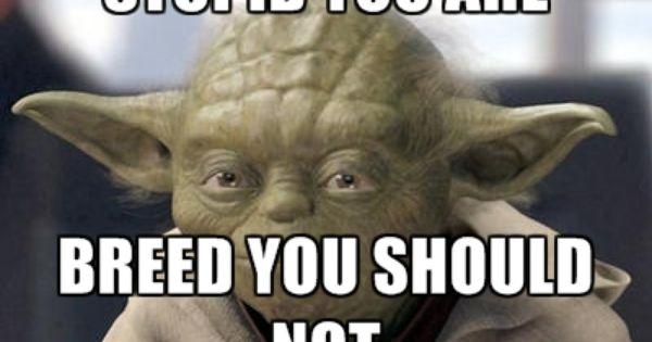 Baby Yoda On Instagram What Really Matters Follow Babyyodamemes Meme Starwarsfans Babyyodamemes Babyyo Star Wars Memes Yoda Funny Star Wars Humor