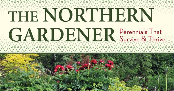 Best performing perennials for usda zone 2 canadian zone for Canadian gardening tips