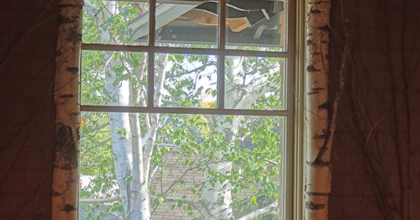Trim Out Windows With Bark Http Www Galleryoftattoosnow