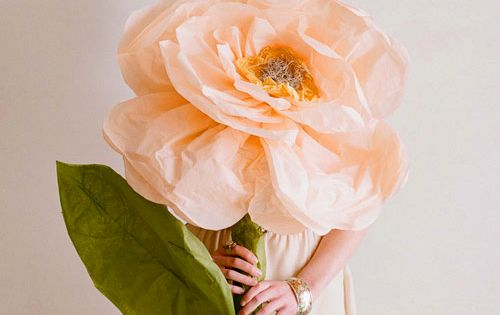 DIY giant tissue paper flower. Love this idea, might have to do