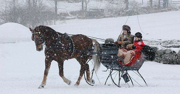 pin snow ride carriage - photo #22