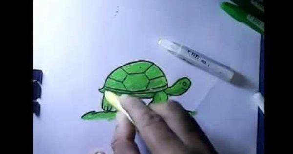 Cara Menggambar Untuk Anak Anak Kura Kura
