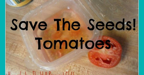 homeschooling the well prepared child save the seeds