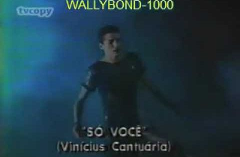 So Voce Vinicius Cantuaria Video Original 1984 Hq Musica