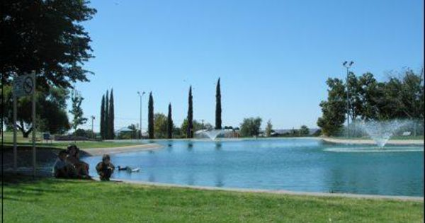 Now Licensed Adults Can Fish At Young Park In Las Cruces Young Park Las Cruces Park