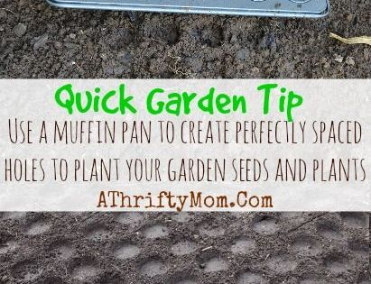 Garden Tip on planting seeds, use a muffin pan to press ...
