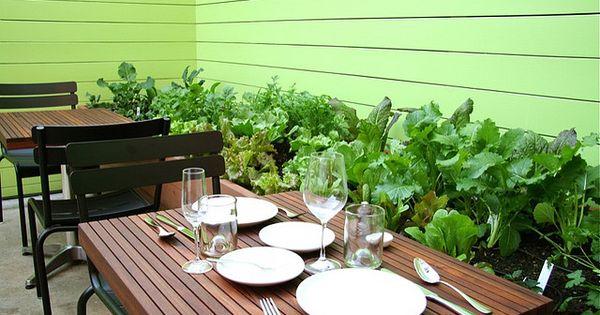 Recinzioni Giardino Design Originale Divertente in addition 514747432380018072 likewise Garden Flower Bed Fencing besides Paint Colors further W9h933. on vegetable garden fence design ideas