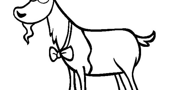 Goat Wearing Bow Tie Coloring Pages Color Luna Coloring Pages