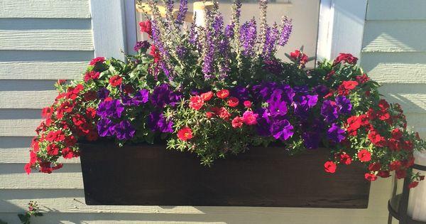 Window Box With Red And Purple Petunias Portulaca