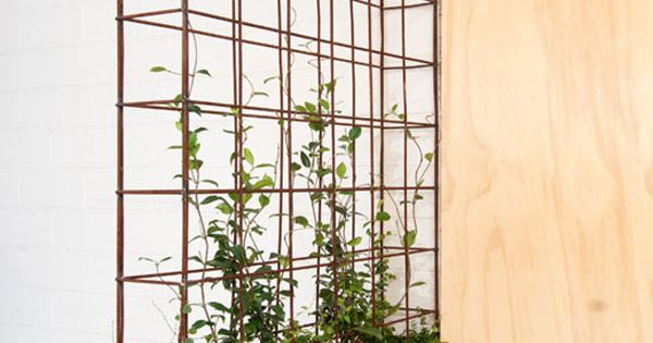 planter dividing wall dividing wall ideas for studios