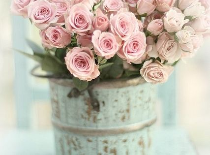 Pretty pink roses, shabby chic, vintage!!!