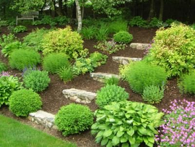 Full Shade Landscaping Ideas For Under A Deck Shade Garden Design Ideas On Front Yard Landscaping Land Shade Landscaping Sloped Garden Front Yard Landscaping