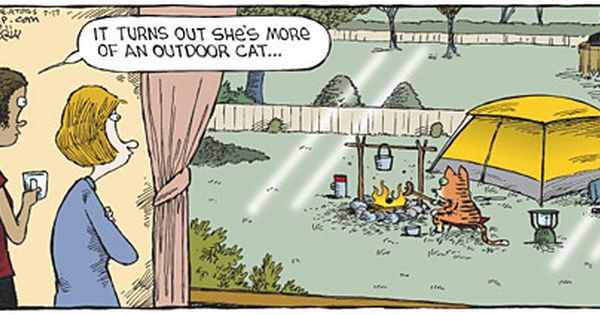 Cold Weather Jokes Used With Permission Of David Coverly Www Speedbump Com Weather Jokes Outdoor Cats Humor