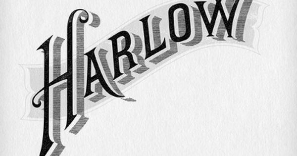 Harlow Fox Lettering Design Typography Branding Typography Inspiration