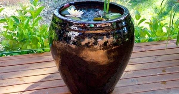 How to make a pot pond better homes and gardens yahoo Yahoo better homes and gardens