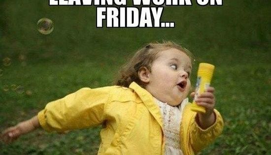25 Funny Friday Memes | Funny, Funny friday and Running away