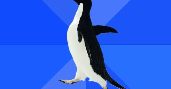 Socially Awkward Penguin - has terrific memory acts forgetful to not seem