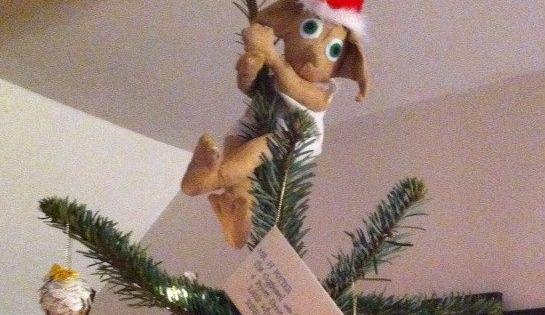 Dobby The House Elf Christmas Tree Topper