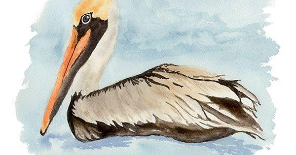 Brown Pelican Art Print From Original Watercolor Riding