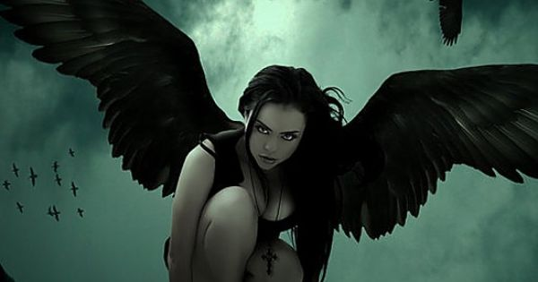 girls like things with wings
