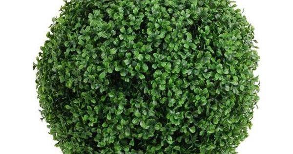 V ronneau plantes et d cors jardin jardin et for Achat plantes et arbustes en ligne