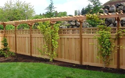 Privacy fence with garden trellis top