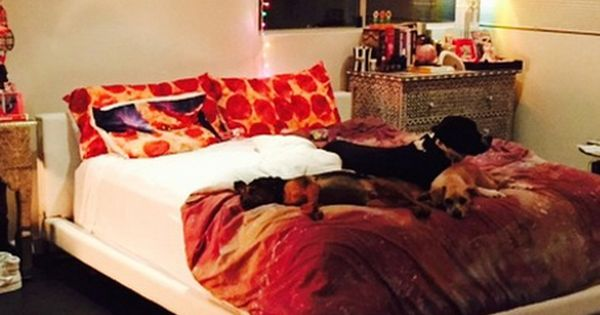 Steal Miley Cyrus' Wacky Pizza-Loving Bedroom Style