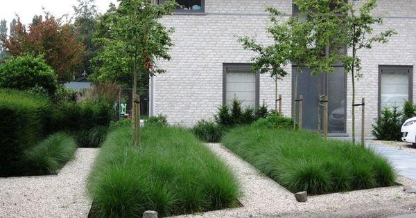 Strakke tuin siergrassen google zoeken voortuin pinterest siergrassen zoeken en google - Moderne tuin ingang ...