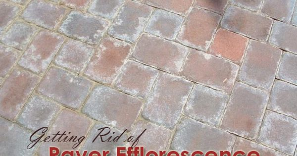 Getting Rid Of Paver Efflorescence Learning Library