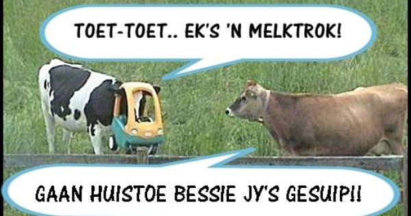 Bessie With Images Afrikaanse Quotes Funny Quotes