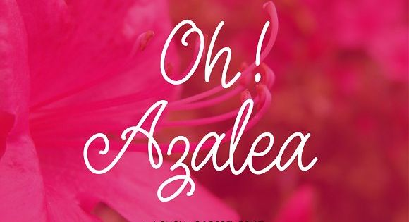 Oh Azalea Script Font by theinkaffair