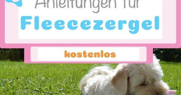 Askan Reinrassiger Langhaariger Schaferhund 2 Jahre Tierhi In Bayern Lauf A D Pegnitz Mischl Langhaar Schaferhund Schaferhunde Deutscher Schaferhund