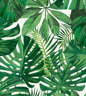 Monstera Leaf 2 Poster Art Print By Tomasz Dabek Displate Floral Poster Tropical Art Print Leaves Wallpaper Iphone