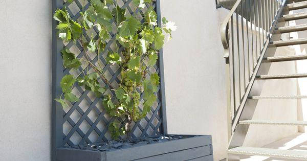 jardini re treillis castorama home jardin pinterest treillis castorama et jardini res. Black Bedroom Furniture Sets. Home Design Ideas