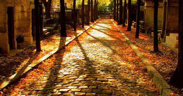 Cobblestone Path, Pere LaChaise Cemetery, Paris, France. What a beautiful place to