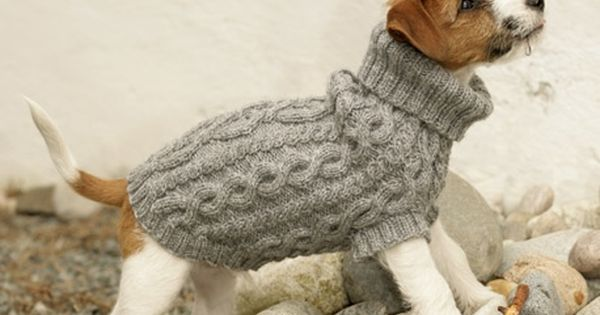 Free Knitting Patterns For Dogs Jumpers : Top 5 Free Dog Sweater Knitting Patterns Free pattern and Dog jumpers