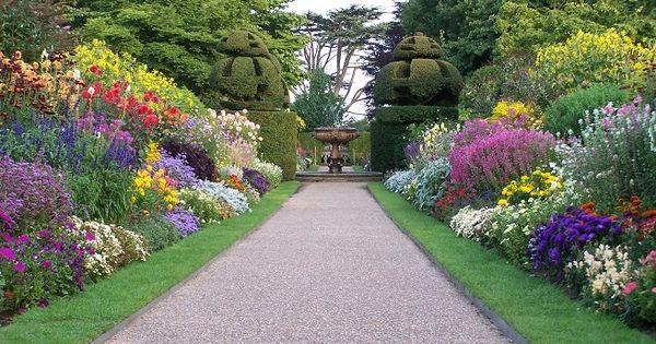 Rboles y arbustos para dividir el jard n proyectos que for Arbustos para jardin