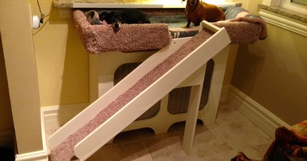 Dog Window Perch With Ramp It Is Built Over A Radiator So