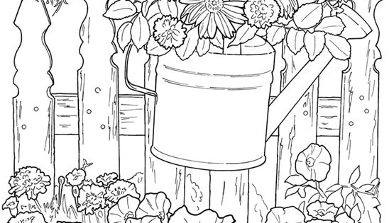 Summer Flowers Adult Coloring pages Pinterest Dover