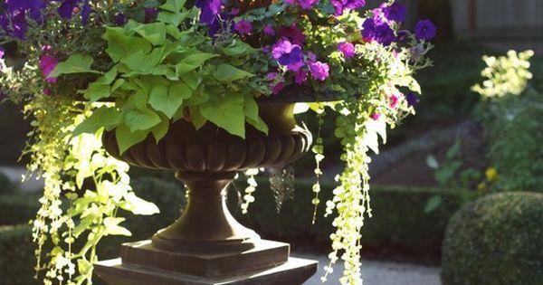 Planter idea!!!