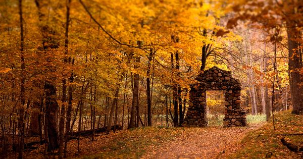 stone portal | pathway autumn leaves changing colors stone portal doorway