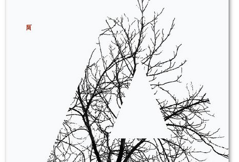I like the negative space created from the image used to create
