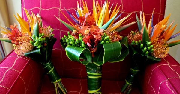 Wedding Flower Arrangements Tampa : Party of me really likes these flowers events in bloom