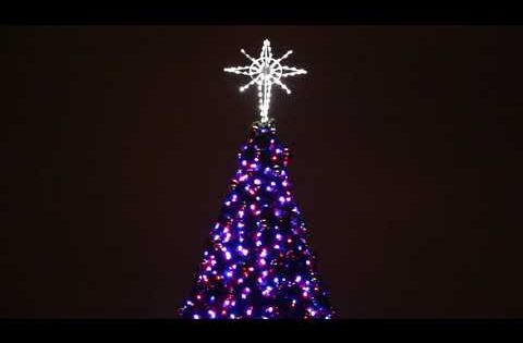 Discounted Animated Christmas Trees Synced To Music Animated Christmas Tree Animated Christmas Commercial Christmas Decorations